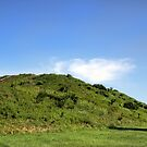 Monks Mound by Paula Bielnicka