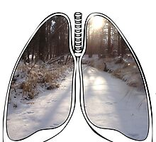 Lungs - Frozen Creek by riskeybr