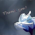 Thank You card with a Tinted Rose by Corri Gryting Gutzman