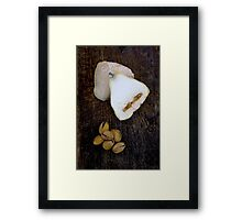 Cheese and Pistachios Framed Print