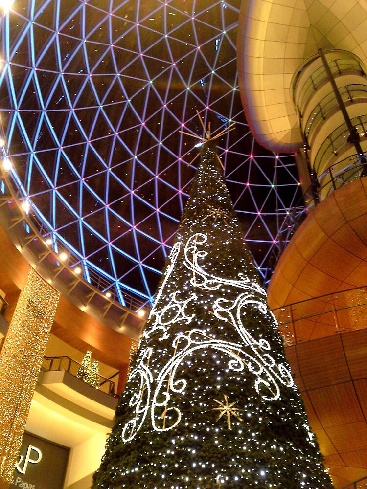 Victoria Square Christmas Tree, Belfast by Chris Millar