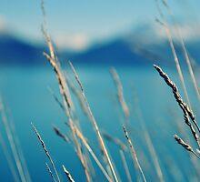 Lake Queenstown by duongie