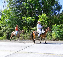 Panamanian Horsemen by Al Bourassa