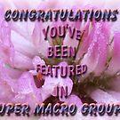super macro banner by vigor