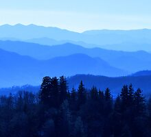 Great Smokey Mountains, USA by Tamara Travers