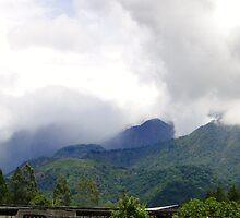Volcan, Panama by Al Bourassa
