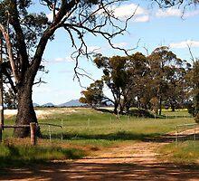 Farm Gates by Fizzgig7