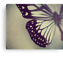 Black and White Wing Metal Print