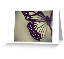 Black and White Wing Greeting Card