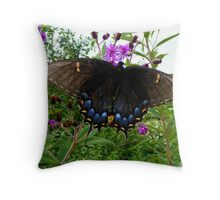 Tiger Swallowtail (Black form) Throw Pillow