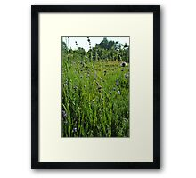 One day your life will flash before your eyes. Make sure its worth watching. Framed Print
