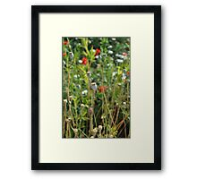 In nature, nothing is perfect and everything is perfect. Trees can be contorted, bent in weird ways, and they're still beautiful. Framed Print