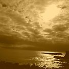 sepia sea n sky by gaylene