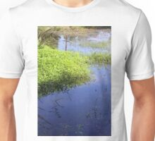 Reflections in Cahokia Unisex T-Shirt