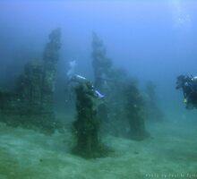 Underwater Temple Garden, Bali by Paul M Turley