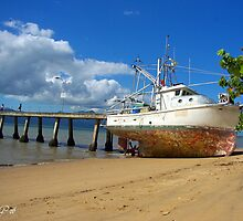 grounded Cardwell Beach by JulieG01