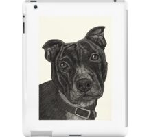 Staffordshire Bull Terrier Pen Drawing iPad Case/Skin