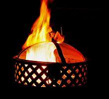 The Beauty of Fire by Jen Waltmon