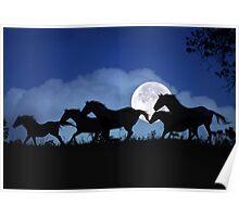 Wild Horse Herd in the Moonlight Poster