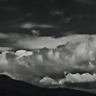 In valley's curves, clouds and birds do fly by clickinhistory