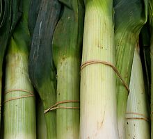 Leeks by AspectJones