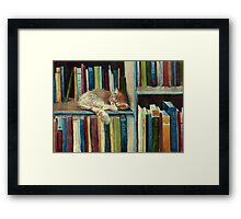Quite Well Read Framed Print