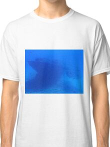 Fish and a Sunken Ship Classic T-Shirt