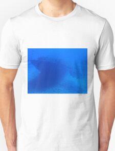 Fish and a Sunken Ship Unisex T-Shirt
