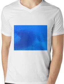 Fish and a Sunken Ship Mens V-Neck T-Shirt