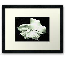 Silver Folds Framed Print