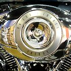 Harley Davidson by Graham Pritchard