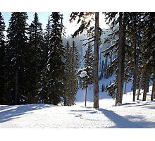 Morning Snow Photographic Print