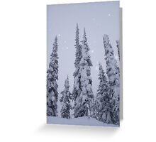 Light dusting Greeting Card