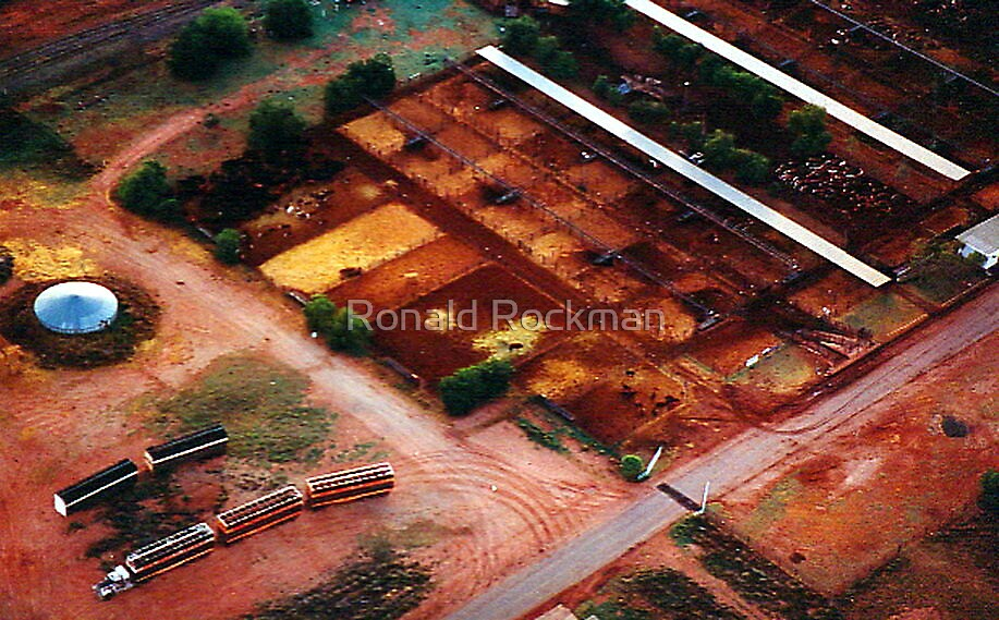 Holding Yards Outback Australia by Ronald Rockman