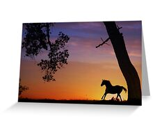 Silhouetted Running Horse Greeting Card