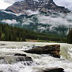Athabasca Falls, Jasper NP by Teresa Zieba
