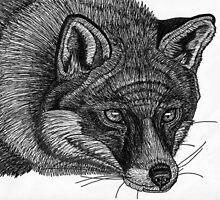 Fox Hand Drawing in Pen by JackassKershaw