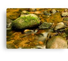 ROCKS AND STREAM  Canvas Print