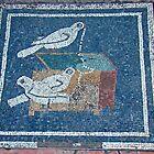 Pompeii Mosaic Tilework 79AD by Al Bourassa