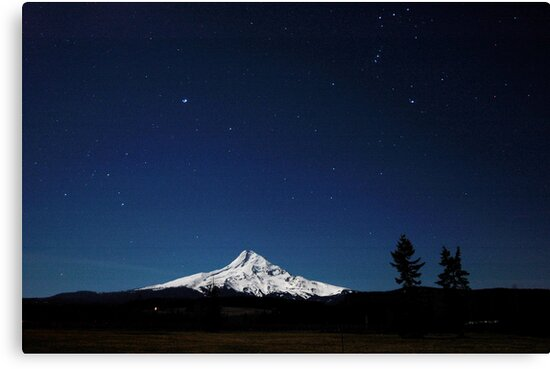 Shooting Stars with Mt Hood   by Bill Lane