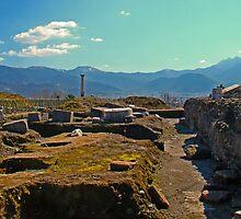 Pompeii Excavations by Al Bourassa