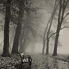 Foggy by Ilcho Trajkovski