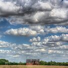 Grain Barn and Barley Field by Nigel Bangert