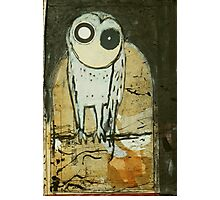 O for Owl Photographic Print