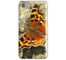 Compton Tortoiseshell Butterfly iPhone Case/Skin