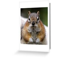 Chippy's Fur Ball Hubby Greeting Card
