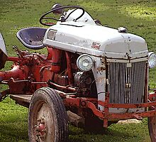 This Old Ford by vigor