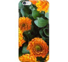 Flora (orange) iPhone Case/Skin