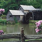 Mabry Mill - Spring by Joe Elliott