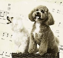 Singing Dogs by susan stone